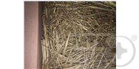 Гвозди финишные бронзированные (КНР) (уценённый товар) DIN 1152